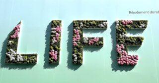 Moi aussi j'espère qu'elle sera durable. Résolument.  #lifestyle #life #lifeforever  #vie #forever #pictureoftheday #paris #france🇫🇷 #france #durable #goodspirit #goodvibes #goodmood #positif #positive #hope #espoir