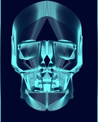 Création du jour : Wireframe skull  #illustrator #webdesigner  #adobe #pictureoftheday #adobeillustrator #paris #france🇫🇷 #france  #wireframe #motiondesigner #motiondesign #graphicdesigner #artwork #instagram  #skull #illustration #artoninstagram  #visualart #graphicart #numericart #numeric #numerique #instaoftheday #art #artistoninstagram #followme #digitalart #digital #death #head