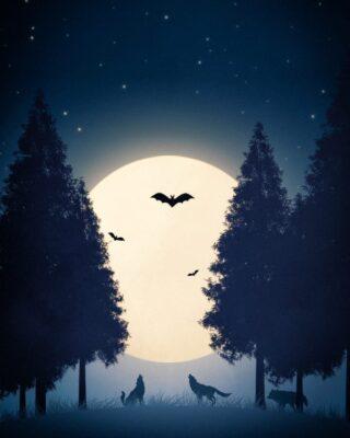Création du jour : Wolves  #webdesigner  #pictureoftheday #adobephotoshopcc  #paris #france🇫🇷 #france #wolf #motiondesigner #wolves #graphicdesigner #repost #artoninstagram #loups #moon #moonlight #photopassion #photoshop #adobe #adobephotoshop #graphisme #artvisual  #lune #landscape #drawing #draw